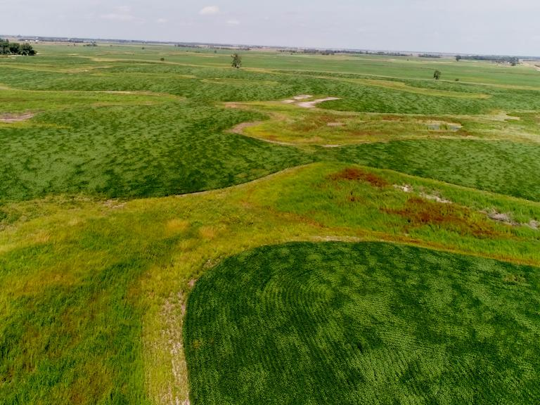 131.49+/- Acres of Crop & Grass in Sanborn County, SD - Sanborn County