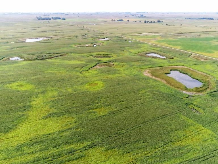 320+/-Acres of Cropland in Deuel County, SD
