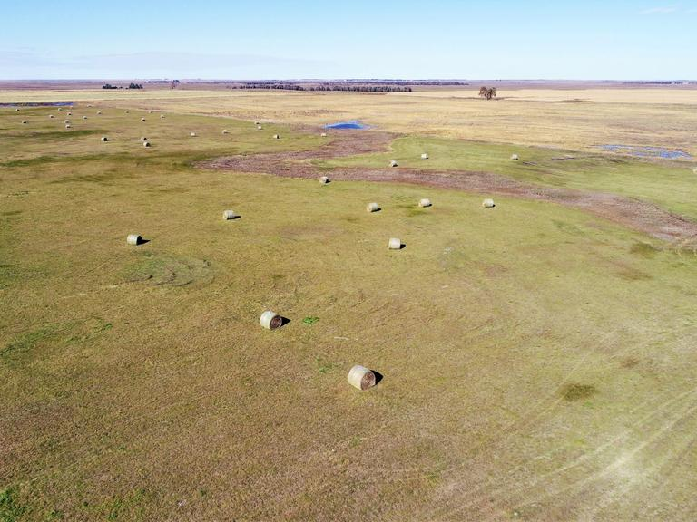 394.52+/- Acres of Pasture Land in Hyde Co, SD