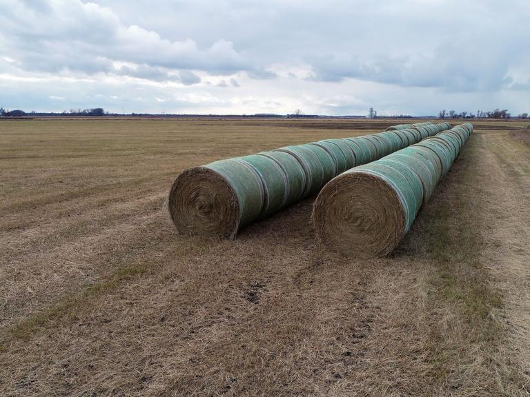 34 Grass Hay Bales - Bidding is $/Bale - Online Auction