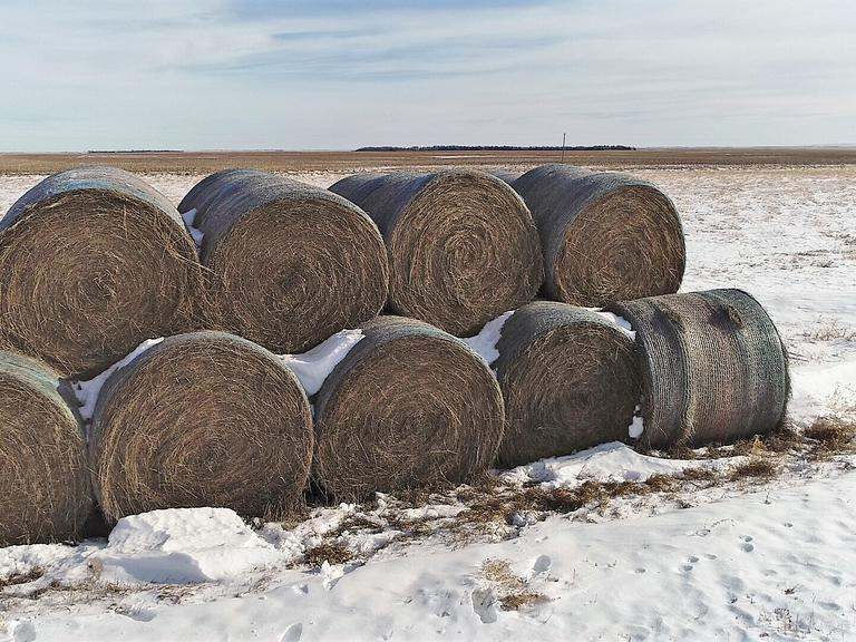 Bidder's Choice 1-2 Loads of 1st Cutting Alfalfa/Grass Mix - Bidding is $/Bale - Online Auction