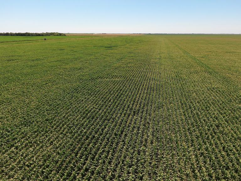 160+/- Acres in Spink Co, SD