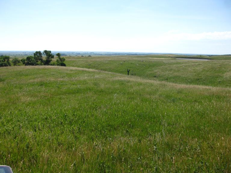 480+/- Acres in Hand Co, SD