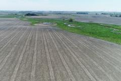 151.5+/- Acres of Crop and RIM Land in Lincoln Co, MN - Lincoln County, MN