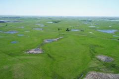Grass & Pasture Land Near Sisseton, South Dakota - Roberts County