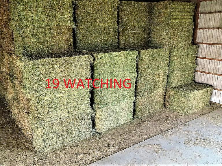 26 Large Grass Alfalfa Equine Squares - BIDDING IS $/TON - Online Auction