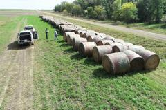 34 Straight Alfalfa Round Bales - 3rd Cutting Quality Feed - BIDDING IS PER/TON - Online Auction
